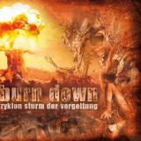 Burn Down - Zyklon Sturm der Vergeltung - Picture LP